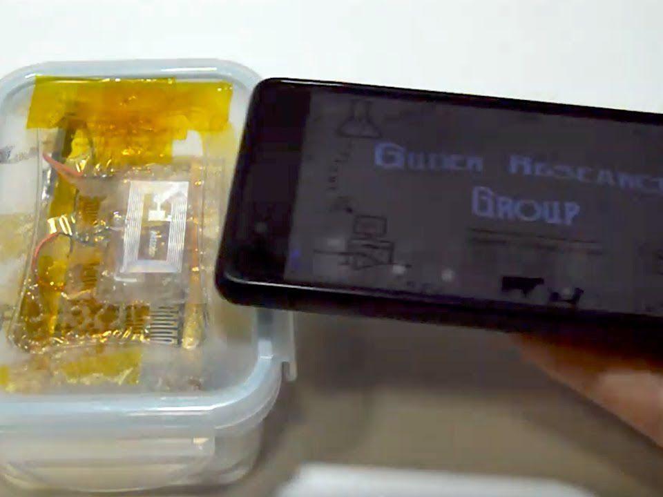 شناسایی غذای فاسد با تلفن همراه