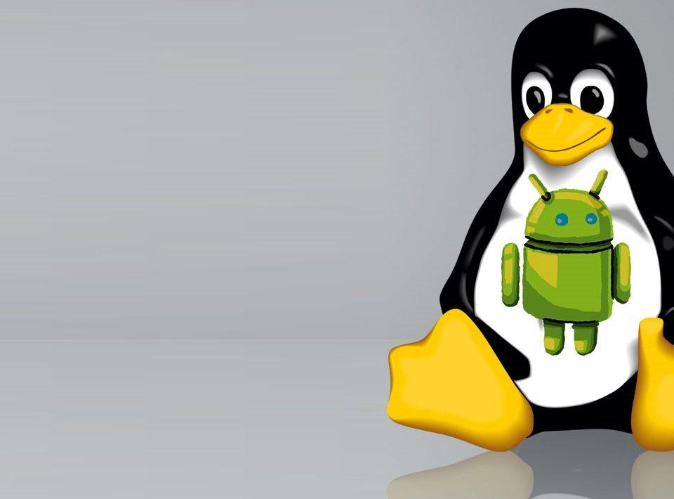 چگونه لینوکس را روی گوشی موبایل اندرویدی نصب کنیم؟